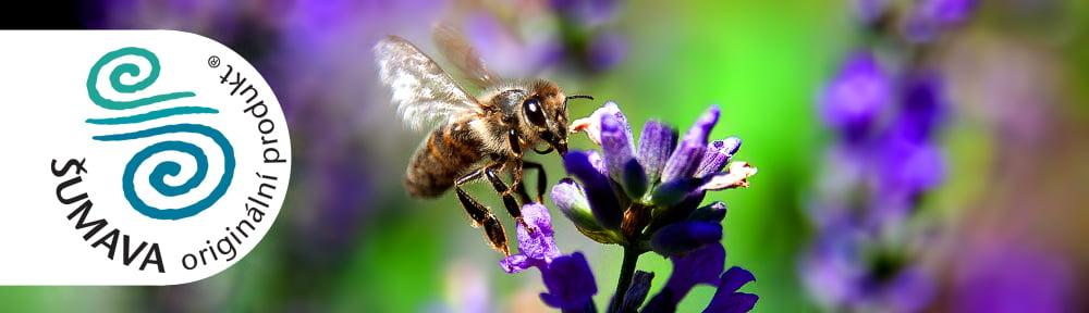 Rodinné včelařství Ratajovi